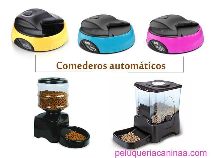 comederos-automaticos-para-perros